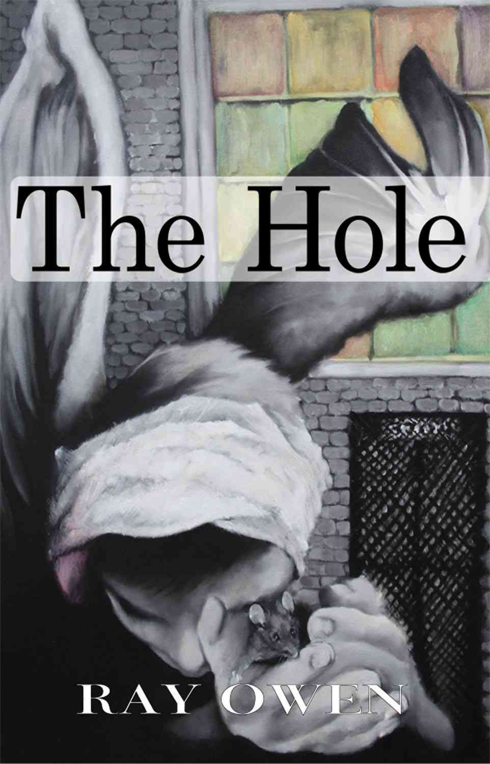 The Hole By Owen, Ray